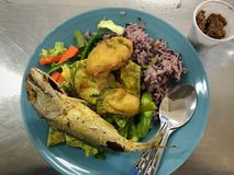 Lunch time of rices and vegetables set. Image picture Stock Photography