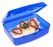 Lunchbox con il panino del formaggio immagine stock libera da diritti