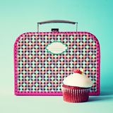 Lunchbox d'annata Fotografie Stock