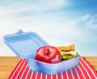 Lunchdoos Stock Afbeelding