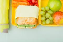 Lunchdoos met plantaardige sandwich, kersentomaten, druiven, gree stock afbeeldingen