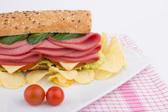 Luncheon sandwich Stock Images