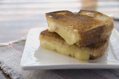 Lunchtime. Nicely melted grilled cheese sandwich on plate Royalty Free Stock Image