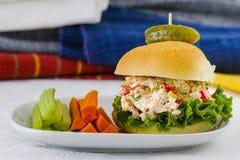 Lunchu czasu tuńczyka sałatki kanapka obrazy stock