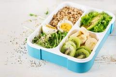 Lunchu pudełko z gotowanymi jajkami, oatmeal, avocado, mikro zieleniami i owoc, obraz royalty free