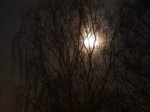 Lune Photos stock