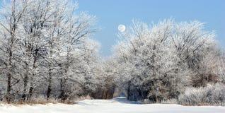Lune au-dessus de journal Images libres de droits