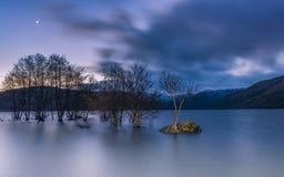 Lune au lac Photo libre de droits