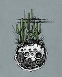 Lune avec l'illustration de cactus Photographie stock libre de droits