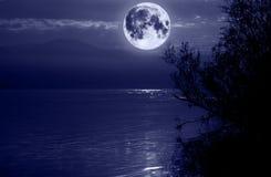 Lune bleue Photos libres de droits