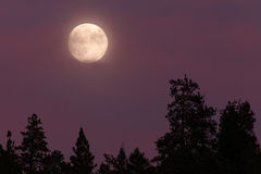 Lune bleue Pleine lune 08/19/13, ressortissant de l'Orégon, Siskiyou de cascade Images libres de droits