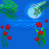 Lune bleue tropicale Photo stock