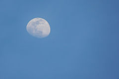 Lune dans la soirée Image stock