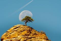 Lune dans Zion image stock