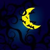 Lune de batte de nuit de vecteur illustration de vecteur