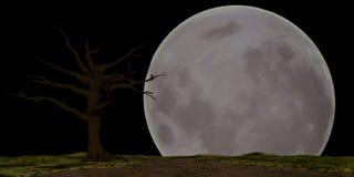 Lune de Halloween Photographie stock