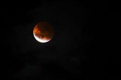 Lune de sang Image stock