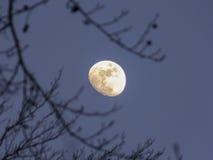 Lune en hausse Photos stock