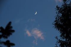 Lune neuve Images libres de droits