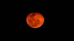 Lune rouge Image libre de droits