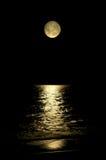 Lune rougeoyante Photos stock