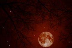 Lune sanglante Photographie stock libre de droits