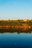 Lune se levant au-dessus du lac Images libres de droits