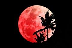 Lune superbe de sang bleu le 31 janvier 2018 images libres de droits