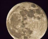 Lune superbe--Périgée en mai 2012 Photographie stock libre de droits