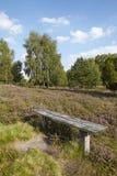 Luneburg荒地-欧石南丛生的荒野 库存图片