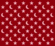 Lunes et profil sous convention astérisque Photographie stock libre de droits