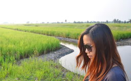 Lunettes de soleil asiatiques d'usage de femme se tenant sur la rizière à la lumière du soleil de matin Photos stock