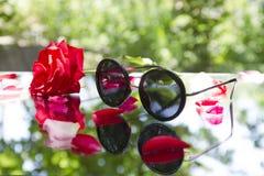Lunettes de soleil avec Rose rouge en nature Images stock
