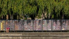 Lunettes de soleil d'étalage, Olginka, Russie Images libres de droits