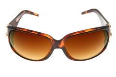 Lunettes de soleil d'isolement de Brown de mode sur le backgro blanc Image libre de droits