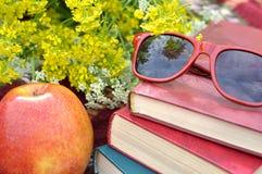 Lunettes de soleil sur une pile de livres Photographie stock libre de droits