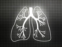 Lung Biology Organ Medicine Study grå färger Royaltyfri Fotografi