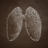 Lung icon Royalty Free Stock Images