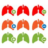 Lung Icon With Plus And Minus Sign. Stock Illustration Royalty Free Stock Photos