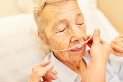 Senior with oxygen glasses in respiratory therapy. Lung patient Senior with oxygen glasses in respiratory therapy in nursing royalty free stock image