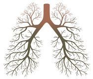 Lung patients. On a white background Stock Image