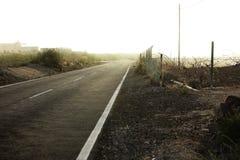 Lunga strada della nebbia Immagine Stock Libera da Diritti