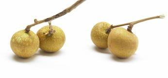 Lungan fruit isolated on white background. WHITE background Royalty Free Stock Photo