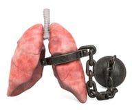 Lungen schmerzen Konzept Menschliche Lungen mit Fessel Wiedergabe 3d lizenzfreie abbildung