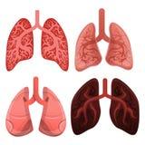 Lungenikonensatz, Karikaturart stock abbildung