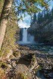 Lungo il fiume cadute di Snoqualmie Fotografia Stock