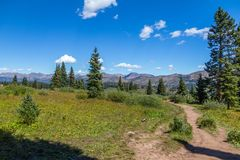 Lungo la traccia di escursione della montagna del santuario, Colorado Fotografia Stock Libera da Diritti