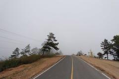 Lungo la via di casa Fotografie Stock Libere da Diritti