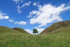 Lungo Roman Wall Fotografia Stock