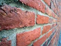 Lungo un muro di mattoni Fotografia Stock